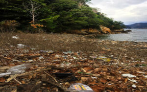 Japan beach with forest and rubbish around showing the environment in bad state